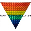 Rainbow Holographic Triangle Magnet Gay Lesbian  Pride