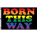 Born This Way Rainbow Flag Strong Polyester 3 feet by 5 feet Gay Lesbian Pride