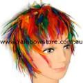 Rainbow Feather Wig Lesbian Gay Pride
