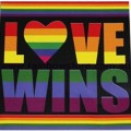 Rainbow Love Wins Sticker Adhesive Gay Lesbian Pride
