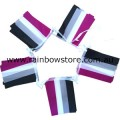 Asexual Flag Bunting 20 Medium Flags 14cm x 21cm Ace Pride