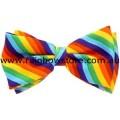Rainbow Diagonal Stripe Bow Tie Lesbian Gay Pride