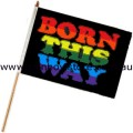 Rainbow Born This Way Flag On Stick Screened 12 inch by 18 inch Gay Lesbian Pride