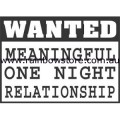 Wanted Meaningful Relationship Badge Button 3cm 1.1 inch Diameter Gay Lesbian Pride